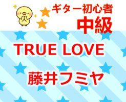 藤井フミヤ true love タイトル
